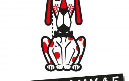 Radio Gamma5 di Padova – si parla di piede torto congenito